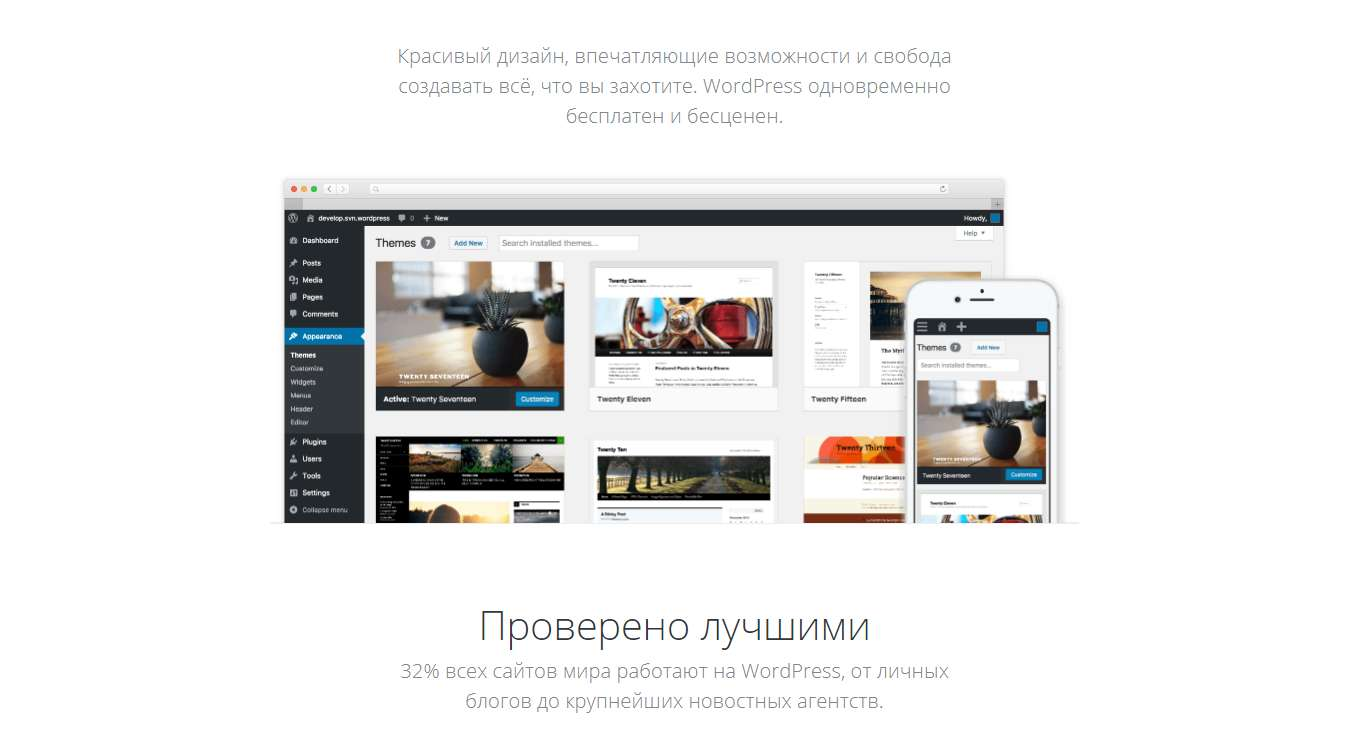 kak-zarabotat-na-svoem-site-wordpress2